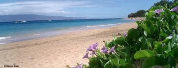 Hawaii3b