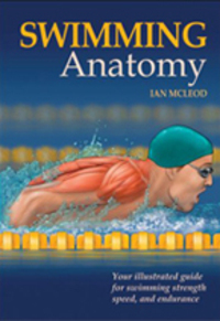 Swimminganatomy12