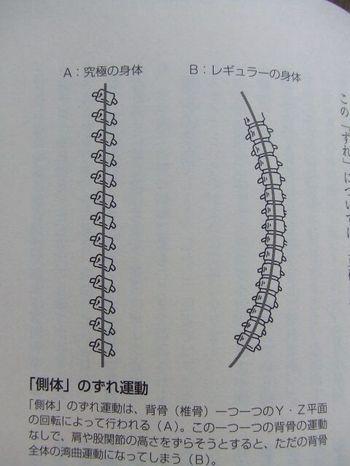 Dscf7987