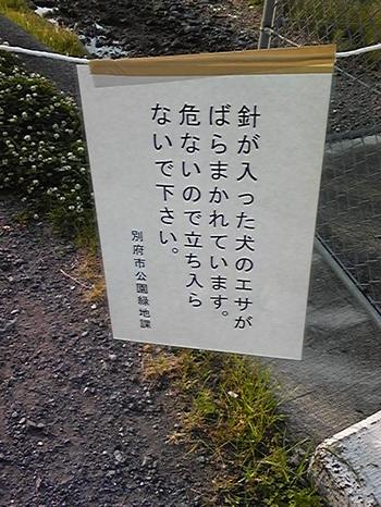 100604_061128